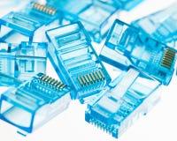 Enchufes azules del lan de Ethernet rj45 Imagenes de archivo