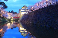 Enciéndase para arriba del castillo y de las flores de cerezo de Hirosaki Foto de archivo