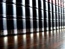 Enciclopedia Fotografia Stock Libera da Diritti