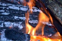 Encienda y los registros de madera ardiendo, fondo de las llamas de la naranja Imagen de archivo