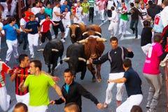 Encierro - Laufen der Stiere lizenzfreie stockfotografie