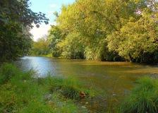 Encima de un río perezoso Foto de archivo libre de regalías