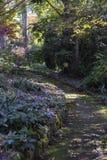 Encima del camino del jardín Imagenes de archivo