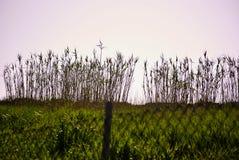 Encima del horizonte Fotografía de archivo