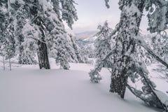 Encima del monte Olimpo fotos de archivo libres de regalías