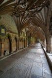 Enclaustre la catedral de Cantorbery, Kent, Inglaterra Fotos de archivo libres de regalías
