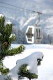 Enclosed ski gondola. Behind a fir tree Stock Photo