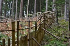 The enclosure protects new trees, reforestation, South Bohemia,. Czech Republic Stock Images