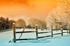 Enclosure in snowy field Stock Image
