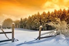 Enclosure in snowy field Stock Photos