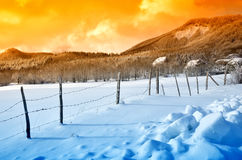 Enclosure in snowy field Royalty Free Stock Images