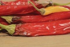 Encolhimento e pimentas de pimentão do molde no fundo de madeira Pimentas de pimentão podres Projeto liso Fotografia de Stock Royalty Free