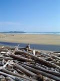 Encontrado en la playa Fotos de archivo