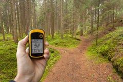 Encontrando a posição direita na floresta através dos gps Foto de Stock