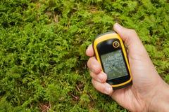 Encontrando a posição direita na floresta com gps Foto de Stock