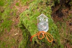 Encontrando a posição direita na floresta com kompass Foto de Stock Royalty Free