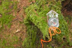 Encontrando a posição direita na floresta com kompass Fotos de Stock