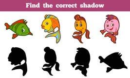 Encontre a sombra correta ilustração stock