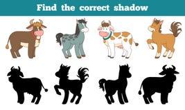 Encontre a sombra correta: animais de exploração agrícola (cavalo e vacas) Foto de Stock Royalty Free