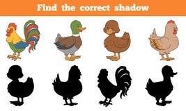Encontre a sombra correta: animais de exploração agrícola (galinha e patos) ilustração stock