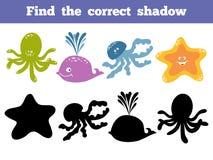 Encontre a sombra correta Grupo de cor do vetor de vida marinha Imagem de Stock