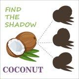 Encontre a sombra correta nuts ilustração do vetor