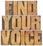 Encontre sua voz Imagens de Stock