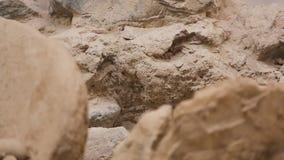 Encontro de construção nas ruínas após a demolição, close-up da parede destruída, sequência vídeos de arquivo