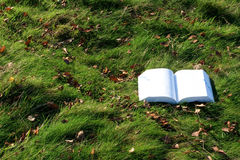 Encontro do livro aberto na grama Imagem de Stock Royalty Free
