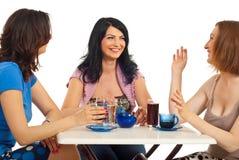 Encontro dos amigos das mulheres da beleza Imagem de Stock Royalty Free