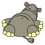 Encontro e sonhos engraçados do hipopótamo Imagens de Stock