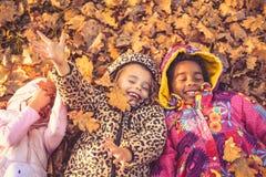 Encontro para baixo nas folhas caídas Fotografia de Stock