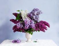 Encore-durée avec un groupe de lilas Images stock
