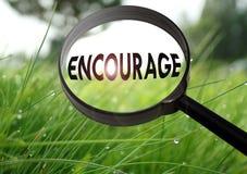 encourage Fotografia Stock