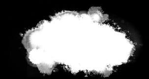 Encre blanche éclaboussant circuler et laver sur le fond noir, éclaboussure d'encre banque de vidéos