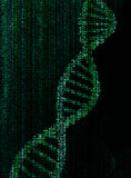 Encrypted dna molecule Royalty Free Stock Photos