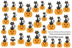 Encuentre el búho entre gatos en las calabazas, juego para los niños, actividad preescolar para los niños, tarea del rompecabezas stock de ilustración