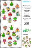 Encuentre el rompecabezas visual de las diferencias - los insectos y los escarabajos Foto de archivo libre de regalías