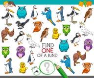 Encuentre uno de una clase con los caracteres del animal de los pájaros Foto de archivo