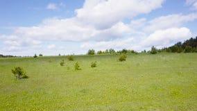 Encuesta aérea del prado verde Visión superior almacen de metraje de vídeo