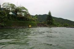 Encuesta de la natación Imagen de archivo