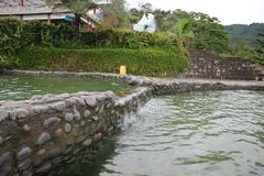 Encuesta de la natación Fotografía de archivo