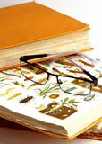 Encyclopedia. A very old encyclopedia and glasses royalty free stock photo