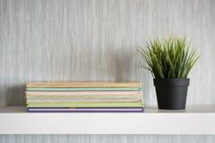 Encyklopedia rezerwuje na białej półce z rośliną w wazie Zdjęcie Stock