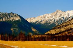 End of the autumn in canada. Jasper national park, alberta, canada, good sunny weather Stock Photos