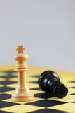 End of a chess game Stock Photos