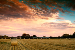 End of day over field with hay bale Royalty Free Stock Image
