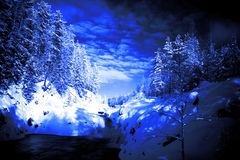 End of evening in deep forest lake Royalty Free Stock Image
