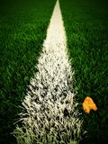 End of football season. Dry birch leaf fallen on ground of plastic green football turf with painted white line . Dramatic colors. Royalty Free Stock Images