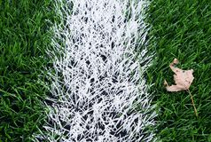 End of football season. Dry leaf on ground of plastic green football turf with painted white line . Stock Images